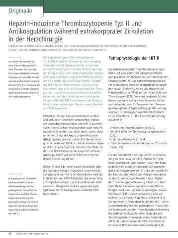 Heparin-induzierte Thrombozytopenie Typ II und ... - Vascularcare.de
