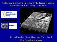 Outcrop Analog Lower Paleozoic Hydrothermal Dolomite Reservoirs ...
