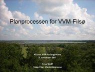 Fra screening til VVM redegørelse