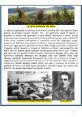 Effettotre n. 20 - Cesd-onlus.com - Page 4