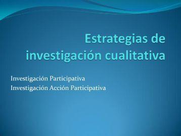 Estrategias de investigación cualitativa (cont.)