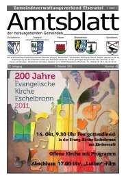 elsenztal 40 11.pdf - Gemeinde Mauer