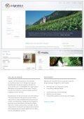 Kurzvorstellung und Portfolio - Raptus AG - Seite 5