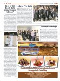 Moartea pe şosele în judeţ - Sibiu 100 - Page 6