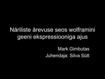 Mark Gimbutas - Archimedes