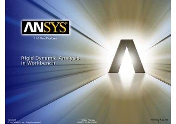 Rigid Dynamic Analysis