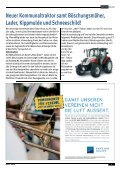Gemeindezeitung März 2013 - Pfaffstätten - Page 5