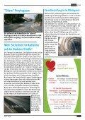 Gemeindezeitung März 2013 - Pfaffstätten - Page 7