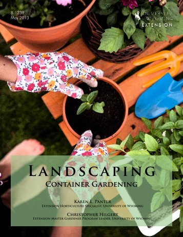 Landscaping: Container Gardening