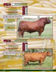 Pages 36 - SaskLivestock