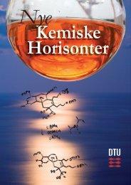 Nye Kemiske Horisonter - Danmarks Tekniske Universitet: Kemisk ...