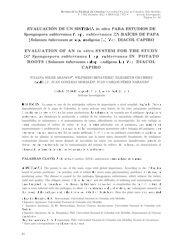 evaluación de un sistema in vitro para estudios de spongospora ...