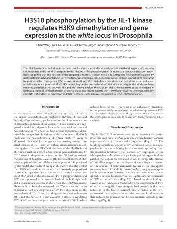Article PDF - Landes Bioscience