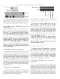 Adult bone marrow-derived mononuclear cells expressing ... - Page 4