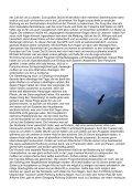 WSF1989 Wie alles anfing - Wandersegelflug - Seite 5
