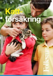 Katt- försäkring - Folksam