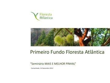 Sociedade Floresta Atlântica - António Nora - Centro Pinus