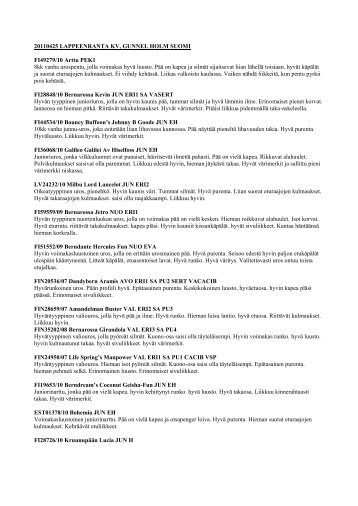 2011-04-25 LAPPEENRANTA KV Gunnel Holm.pdf