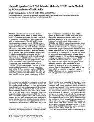 Natural Ligands of the B Cell Adhesion Molecule CD22/3 can be ...