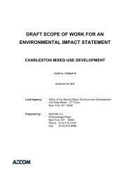 DRAFT SCOPE OF WORK FOR AN ENVIRONMENTAL ... - NYCEDC