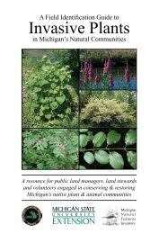 Invasive Plants - Michigan Natural Features Inventory
