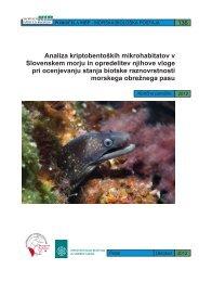Analiza kriptobentoÃ…Â¡kih mikrohabitatov v Slovenskem morju in ...