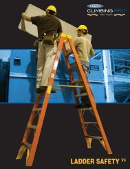 LADDER SAFETY V3 - National Ladder and Scaffold Co.