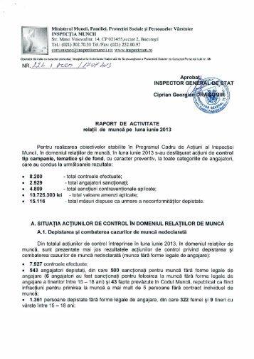 Raport de activitate in domeniul relatiilor de munca - IUNIE 2013