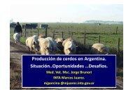 Jorge Brunori - AAPA | Asociación Argentina de Producción Animal