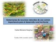 Gobernanza-Recursos de uso comun.pdf - Catie