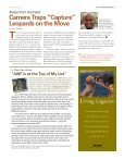 Small Victories Offer New Hope for Mountain Gorillas - Page 7