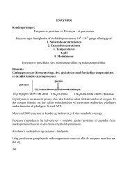 ENZYMER Kendesgerninger: Enzymer er proteiner ⇔ Et enzym - et ...