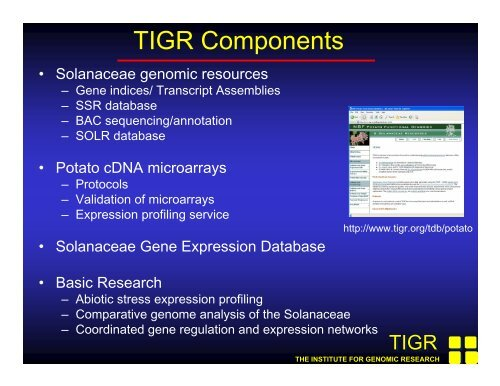 TIGR Components - NSF Potato Genome