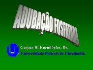Gaspar H. Korndörfer, Dr. Universidade Federal de Uberlândia