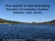Suksessfaktorer og fallgruver ved strømping - BluePlanet AS