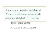 A cana e a questão ambiental Aspectos sócio-ambientais ... - Cogen