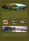 Pommern im Norden (Nordsee) - Jagdreisen Muraun - Seite 2