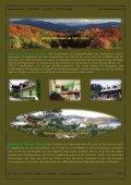 Pommern im Norden (Nordsee) - Jagdreisen Muraun - Seite 4