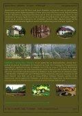 Pommern im Norden (Nordsee) - Jagdreisen Muraun - Seite 5