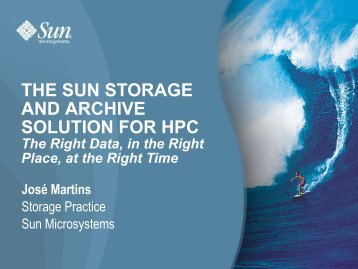 THE SUN STORAGE AND ARCHIVE SOLUTION FOR HPC