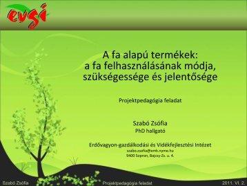 A fa alapú termékek - NyEOMSzSz