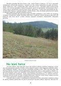 Na lesní horce - Page 4