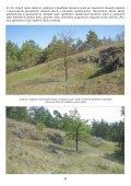 Na lesní horce - Page 5