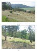 Na lesní horce - Page 6