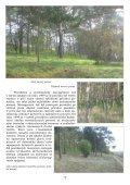 Na lesní horce - Page 7