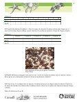 PDF à imprimer - Page 5