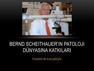Bernd Scheithauer'ın Patoloji Dünyasına Katkıları