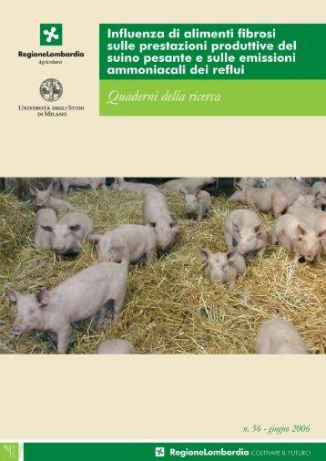 Quaderno della ricerca n.56 (4.6 MB) - Lavoro.regione. lombardia .it