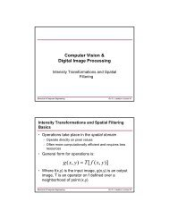 Intensity Transformations and Spatial Filtering