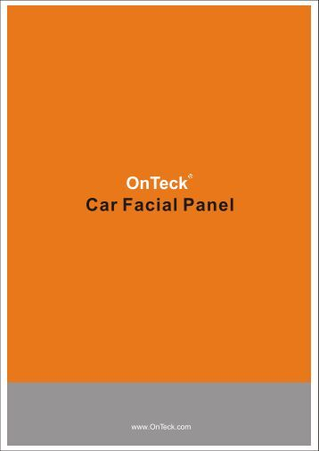 Car Facial Panel 2009-8 - OnTeck